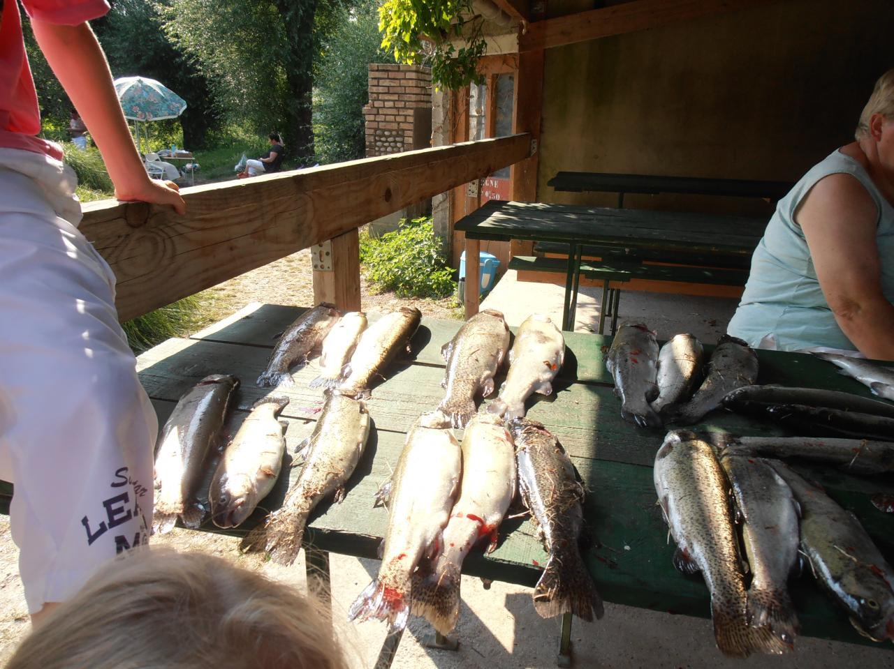 Journée pêche 2013